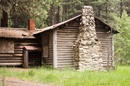 An old abandoned log cabin in the woods