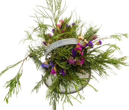 Floral arrangement of evergreens in a watering can Stock Photo - 16882030