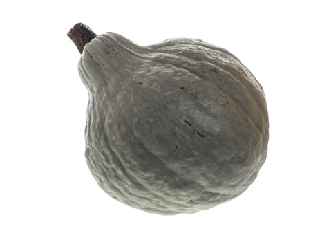 Blue hubbard squash isolated on white