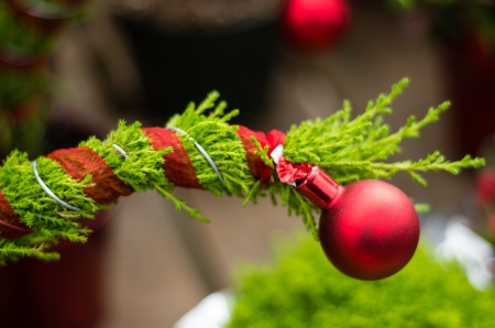 A red Christmas ornament and ribbon on an evergreen branch Stock Photo - 17001973