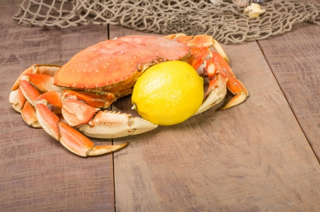 dungeness: A Dungeness crab ready to be cooked with lemon Stock Photo