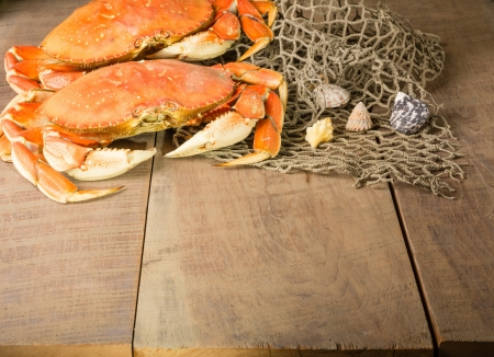 dungeness: Two Dungeness crabs and net with seashells