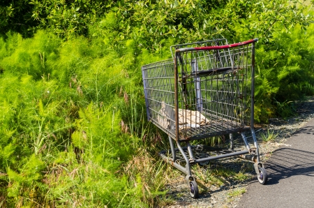 A shopping cart abandoned along a walkway in a park