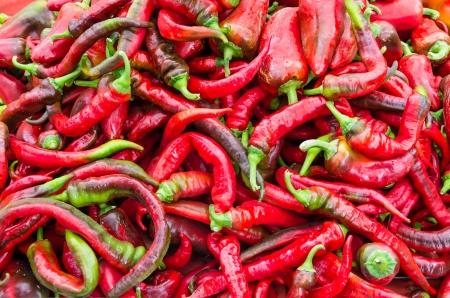 chiles picantes: Red hot pimientos en exhibici�n en el mercado de los agricultores Foto de archivo