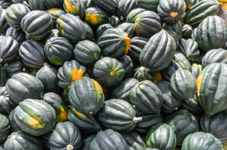 Acorn squash on display at the farmers market
