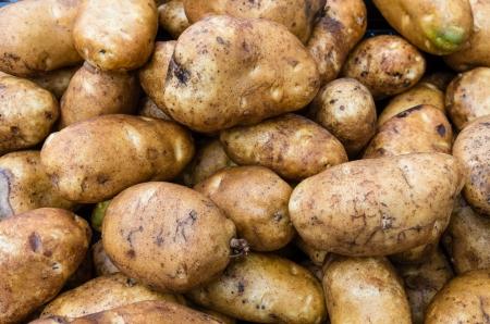 あずき色の農民市場での表示でジャガイモを焼く