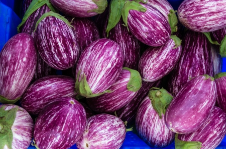 Eggplants with stripes purple and white at the market
