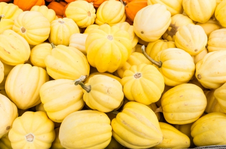 Yellow acorn squash on display at the farmers market