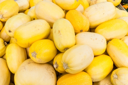 Spaghetti squash or vegetable spaghetti on display at the farmers market Stock Photo