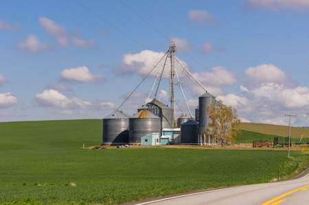 grainery: Farm fields with grain storage silos and elevator Stock Photo