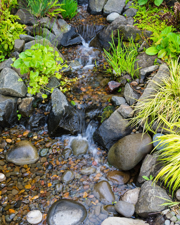 water feature: Bubbling brook water feature with stones and plants Stock Photo