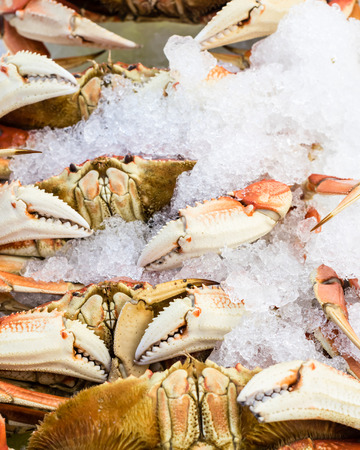 Fresh Dungeness crab on ice at the market photo