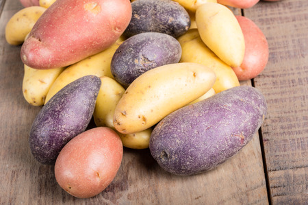 fingerling: Group of fresh fingerling potatoes on a wooden table close up
