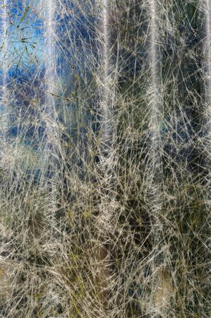 繊維の背景の半透明ガラス繊維 写真素材