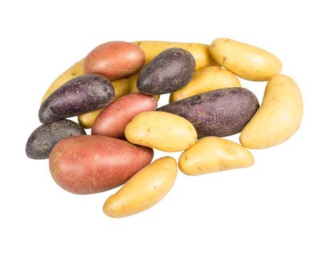 Fingerling potatoes of several colors on white Banco de Imagens