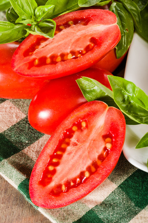 cut and paste: Cut paste tomatoes with basil