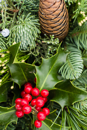 cedars: Evergreen arrangement with cones and holly Stock Photo
