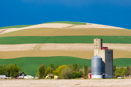 Growing crops in fields with grain silo