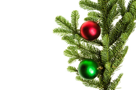 bough: Noble fir bough with red and green ornaments isolated