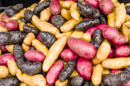 fingerling: Display of fingerling potatoes at the market