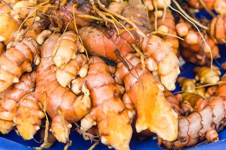 tumeric: Freshly dug tumeric root at the market