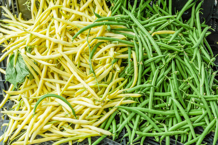 snap bean: Display of green and yellow snapo beans at the market