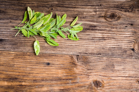 variegated: Bundle of fresh picked variegated sage on a wooden table