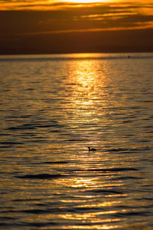 Bright orange sunset over the Pacific Ocean