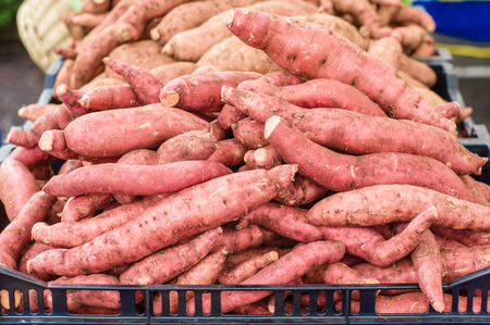 sweet potatoes: Fresh sweet potatoes just picked at the farmers market