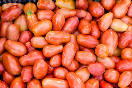 harvests: Red paste tomatoes on display at the market