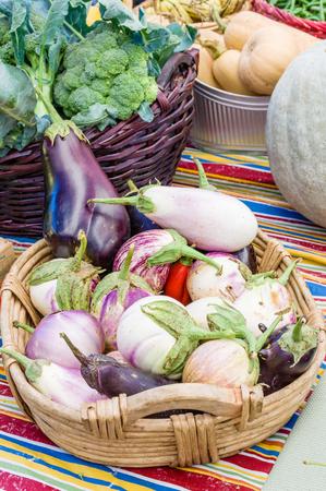 Basket of fresh eggplants at the farmers market