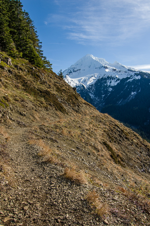 mt hood national forest: Trail leading through the pass near snow capped Mt Hood Stock Photo