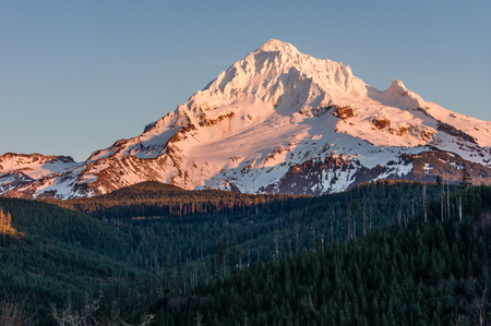 mount hood national forest: Mount Hood with snow cover and forested foot hills Stock Photo