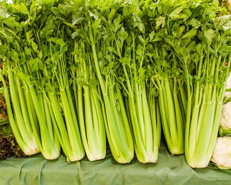 Green celery at the farmers market display Banco de Imagens