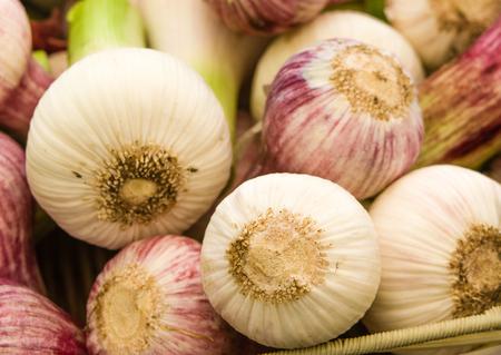 Fresh red summer garlic at the market display