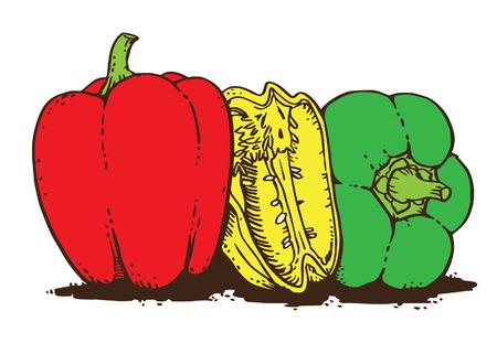 pimenton: Paprika Vectores