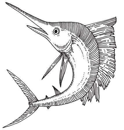 billfish: Swordfish