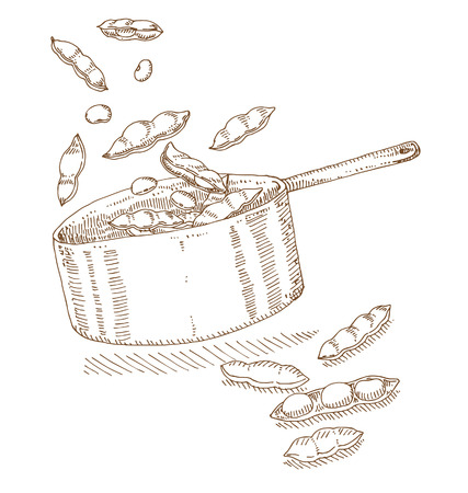 legume: Soybeans in the pot. Illustration