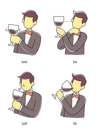 Man taste wine in four step method, Vector illustration.