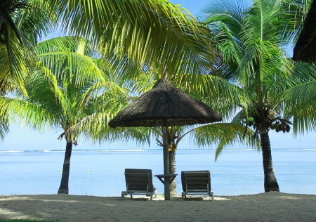 morn: Two sunbeds, umbrella and palms, Lux Le Morn Hotel, Le Morn Beach, Mauritius, Africa