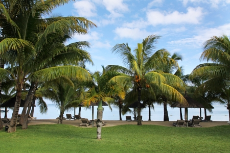 lux: Lux Le Morn Hotel, Le Morn Beach, Mauritius, Africa