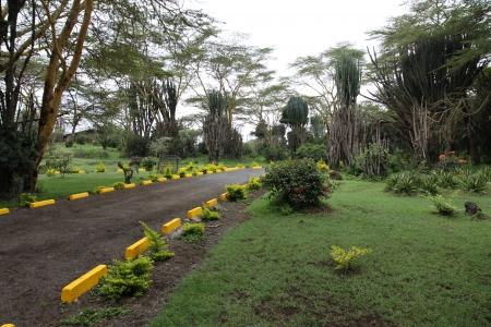 sopa: Park, Lake Naivasha Sopa Resort, Kenya, Africa