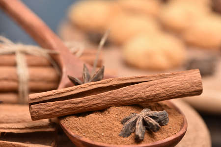 Traditional Christmas spices - Star anise with cinnamon and cloves on dark rustic wooden background Cinnamon bark and hammer and biscuits. Banque d'images