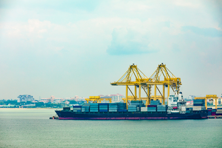 Port Cargo ship and Crane lifting for cruising or product