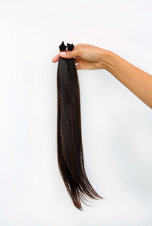 hairline: arm with a hand gripping a bunch of cut off long hair, Donate hair to cancer patient white background isolated