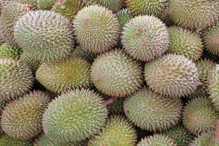 friut: pile of durain from garden in thailand market, king of friut