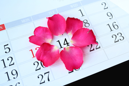 Calendar page with pink petals roses on February 14 of Saint Valentines day. Stock Photo