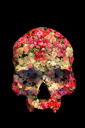 Skull with Roses in double exposure style on black background Stock Photo