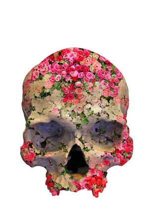 Skull with Roses in double exposure style on white background