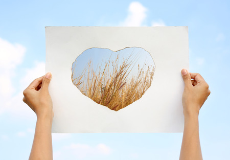 Hands holding paper art sheet Burning in shape of heart with image of dried grass against Cloud sky.